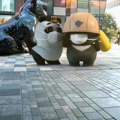 Panda Gif, Panda Funny, Cute Panda, Panda Meme, Funny Short Videos, Funny Video Memes, Funny Animal Videos, Funny Animals, Funny Baby Gif