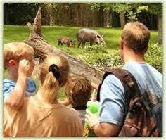 Zoo Careers Series: Animal Trainer and Behaviorist Nashville, TN #Kids #Events