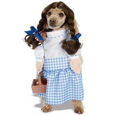 It's Toto! Wizard of Oz Dorothy Dog Costume from BuyCostumes.com #WizardofOz #PetCostume #DogCostume