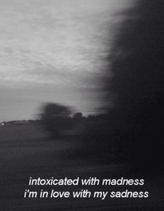 intoxicated with madness ... I'm in love with my sadness-this couldn't have described me better