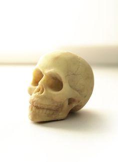 White Chocolate Skull by sparganum on Etsy.