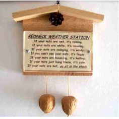 Hillbilly weather station novelty gag gift custom by SSWOODCRAFT by deann Gag Gifts Christmas Funny, Redneck Christmas, Christmas Love, Christmas Crafts, Christmas Ideas, Summer Christmas, Diy Gag Gifts, Joke Gifts, Funny Gifts