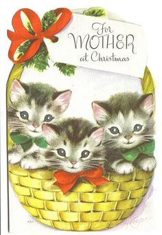 Vintage Kitten Christmas Card, For Mom Cat Christmas Cards, Christmas Kitten, Old Christmas, Old Fashioned Christmas, Christmas Animals, Retro Christmas, Christmas Items, Holiday Cards, Xmas