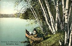 Out of the Past:  November 28, 1854.  Paddled to Clamshell.  Still very clear and bright as well as comfortable weather. River not so high as on the 16th.  Were those plover which just after sunset flew low over the bank above the railroad and alighted in the opposite meadow, with some white in tails like larks, gray birds, rather heavier than robins?  http://www.outriderbooks.com/oop/Thoreau1128.html