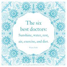 The Six Best Doctors