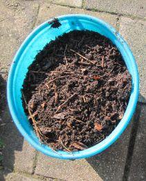 De bodem is alleen zand met weinig organisch materiaal en weinig voedingsstoffen, daarom voegen we er wat compost aan toe.