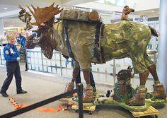 greeting people at Albany, NY airport