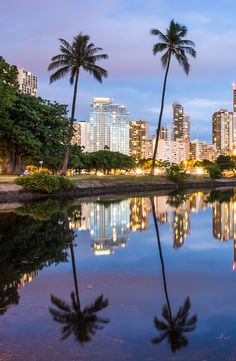 Dusk view of Waikiki from Ala Moana Beach Park pond Vacation Places, Best Vacations, Vacation Trips, Vacation Spots, Hawaii Vacation, Vacation Ideas, Beautiful Islands, Beautiful Places, Places Around The World