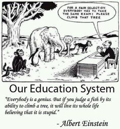 """""""If you judge a fish by its ability to climb a tree, it will live its whole life believing that it is stupid."""" Albert Einstein"""