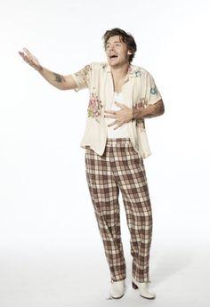 Harry Styles Snl, Harry Styles Update, Harry Styles Cute, Harry Styles Pictures, Harry Edward Styles, Harry 1d, Harry Styles Wallpaper, Mr Style, Thing 1