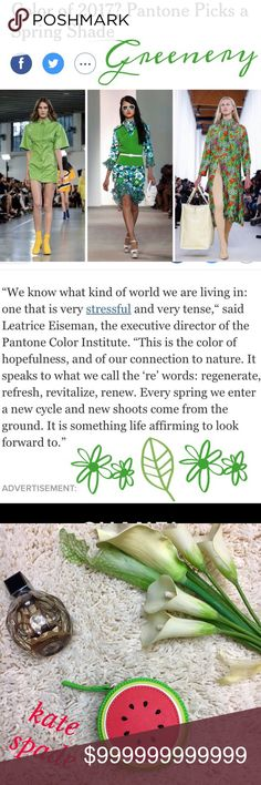 """Greenery Is Pantones 2017 Color of the Year Pantones color of the year is Greenery. It's a Spring color.  The connected to the """"re-words"""" regenerate, refresh, revitalize, & renew. It is also the color of hopefulness. Other"""
