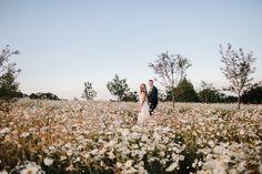 The Carriage Rooms Wedding // Nick & Rebecca – Best Wedding Venues, Wedding Day, Lakeside Garden, Garden Games, Photography Portfolio, Northern Ireland, Summer Days, Falling In Love, Wild Flowers
