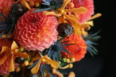 Just gorgeous - Fall flowers