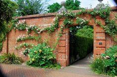 brick in garden