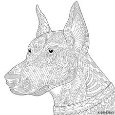Vector: Stylized doberman pinscher dog, isolated on white background. Freehand…