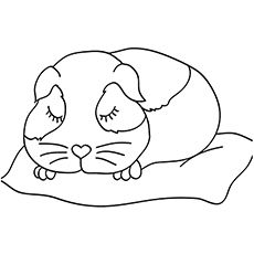 Guinea Pig Pregnant Guinea Pig Coloring Page