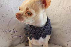 Fait à la main - cadeau de pull - blanc en laine chien pull - chiot chaton - Chihuahua - chiot - vêtements pour Chihuahua - chiens et chats Chihuahua, French Bulldog, Dog Cat, Cats, Animals, Dog Baby, Wool, Gift, Bulldog Frances