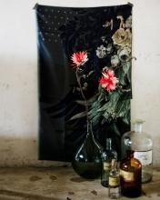 Jeroen van der Spek:::Flowers   stillstars.com