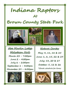 Indiana Raptors at Brown County State Park and Abe Martin Lodge - See Flyer for dates - Also look forward for 2014 dates! #familyfun #browncounty #indianaraptors #abemartinlodge #browncountystatepark #nature #fun