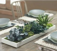 Living Fern and Moss Centerpiece by VivaTerra