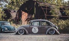 Volkswagon Bug, Volkswagen Golf, Bugs, Vw Mk1, Hot Vw, Beetlejuice, Vw Beetles, Cars And Motorcycles, Street Rods