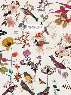 Página dedicada a la creación y diseño de estampados exclusivos de Mónica Muñoz - Moniquilla - Textile Patterns, Print Patterns, Botanical Illustration, Illustration Art, Botanical Prints, Floral Prints, Motif Floral, Surface Pattern Design, Bird Prints