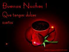 IMAGENES-BONITAS-DE-BUENAS-NOCHES.gif (500×375)
