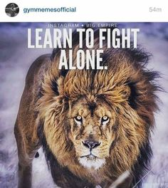 If you want to be strong Learn How To Fight Alone! Lioness Quotes, Learn To Fight Alone, Foundr Magazine, Digital Magazine, Best Quotes, Life Quotes, Awesome Quotes, Favorite Quotes, Lion And Lioness