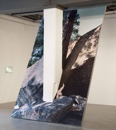 artruby:    Letha Wilson, Ghost of a Tree, (2012).