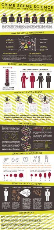 A Guide To Deduction, forensicimagination: (via Fun Crime Scene...