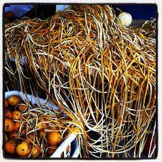 Peeling oranges , San Juan Puerto Rico @vantaggiato