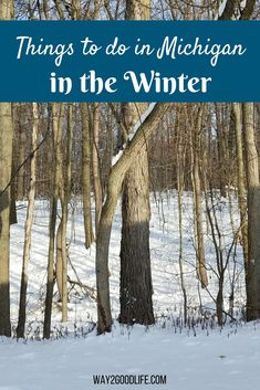 Check Out Our List Of Great Things To Do In Michigan The Winter Months