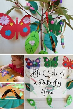Preschool Crafts For Kids, Life Cycle Of a Butterfly, Butterfly Crafts - Preschool Children Activities Butterfly Project, Butterfly Tree, Butterfly Life Cycle, Butterfly Crafts, Butterfly Exhibit, Butterfly Mobile, Butterflies, Diy And Crafts, Crafts For Kids