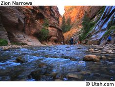 The Narrows hike at Zion National Park in Utah is by far the best hike I've been on so far. The hiking trail is the river that runs through the slot canyon, so hikers will be in water for most of the hike. Awesome experience. Put this on your Bucket List. We are definitely going back to do the whole hike.