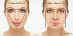 Facial shape changes with the age. The triangular shape in … Facial shape changes with the age. The triangular shape in the youth becomes squared as we age. The triangle of youth turns into a square Facial Anatomy, Head Anatomy, The Body Shop, Sagging Cheeks, Sephora, Medical Photos, Age, Makeup Revolution, Face Shapes