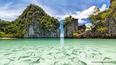 Hong Island Krabi Tour by Catamaran - Phuket Tours Krabi Island, Phuket City, Beaches In Phuket, Paradise Travel, Krabi Thailand, Thailand Travel, Khao Lak, Koh Chang, Islands