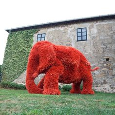 superb model for elephant made of flowers, it's an adorable creativity. please like and share it to your timeline & friends: http://pinterest.com/travelfoxcom/pins/
