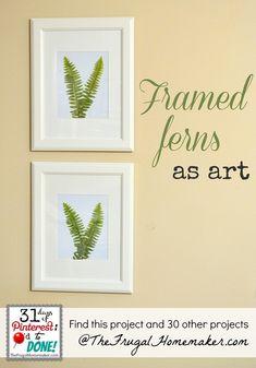 Framed ferns as art (day 31 of 31 days of Pinterest)