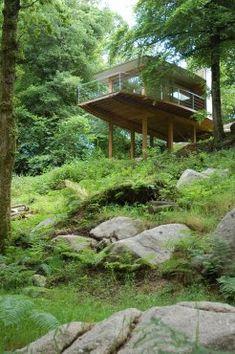 Treehouse in Devon/Roderick James Architects