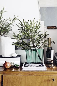 Holiday Idea to Steal: Mini Trees - Apartment34