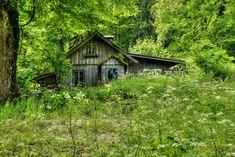 http://fc05.deviantart.net/fs70/i/2013/170/7/a/old_house_in_the_woods_by_austriaangloalliance-d69q11m.jpg