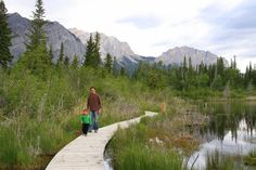 5 Reasons to Love Camping at the Bow Valley Campground, Kananaskis / Family Adventures in the Canadian Rockies