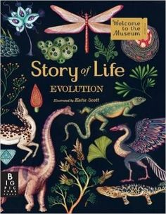 Story of Life: Evolution (Welcome to the Museum): Katie Scott: 9781783704446: AmazonSmile: Books