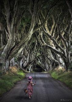 Nordirland 2