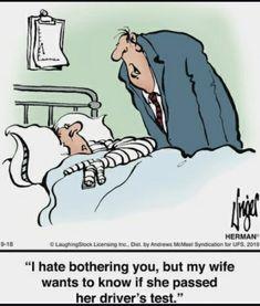 Funny School Memes, School Humor, Funny Memes, Jokes, Herman Cartoon, Herman Comic, Funny Picture Quotes, Funny Pictures, Hospital Cartoon