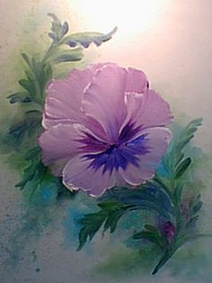 How To - Pansy 15