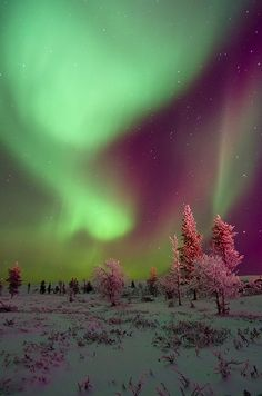 Northern Lights vista. | Flickr - Photo Sharing!