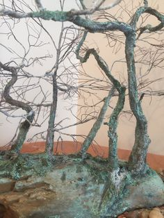 This is the chance to experience trees in a new way. Winter is the best time of the year to see the actual branches and trunk of the tree - without the leafy covering Peace Art, Miniature Trees, One Tree, Time Of The Year, Wabi Sabi, Recycled Materials, Copper Wire, Bonsai, Sculpture Art