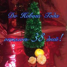 До Нового Года осталось 38 дней! Пора начинать задумывается о подарках родным и близким! У нас есть необычные елочки ручной работы украшенные шоколадными конфетами на любом вкус! 🎄🍬 елка конфеты новый год подарок мандарины подарки на заказ москва лучшее для тебя