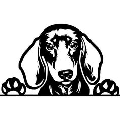 Dachhund Head Dog Vinyl Sticker for Car Wall Laptop Bumper Decal
